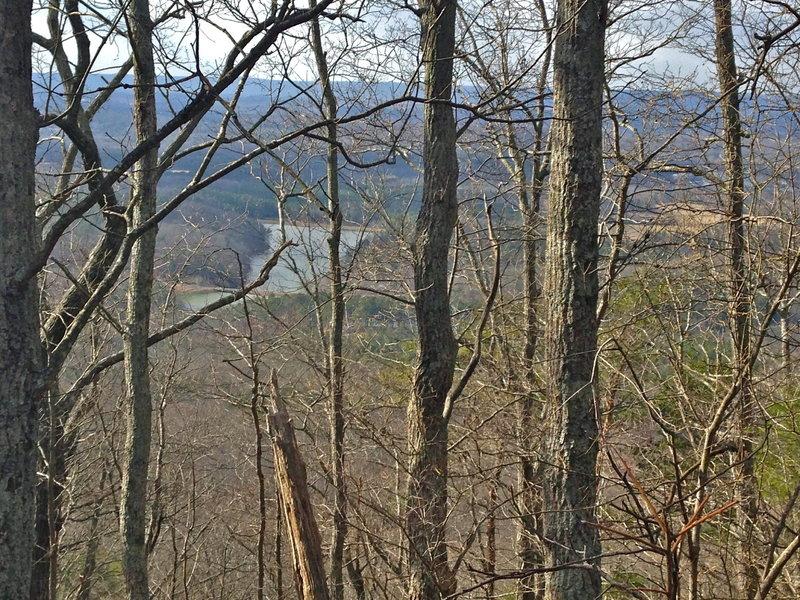 Wintertime view toward Sloppy Floyd State Park.