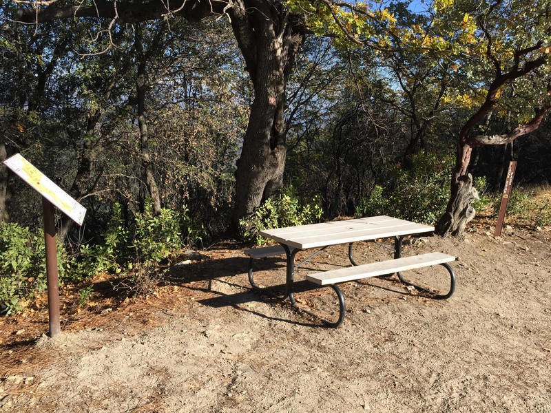 The Mule Trailhead features a map and a bench to rest on.