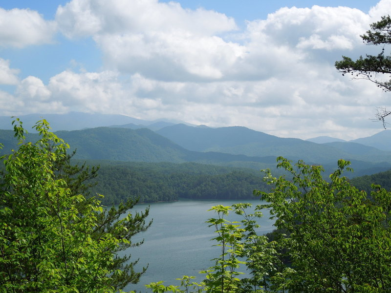 View from Mouse Branch Overlook Trail at Tsali