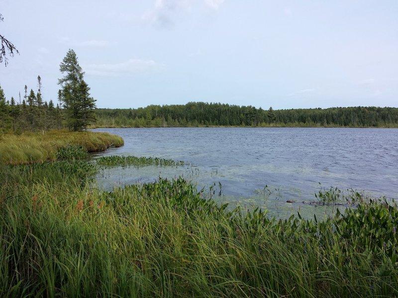 Patsy Lake