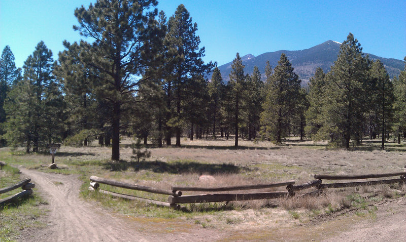 View from the Sunset Parking Lot. Schultz Creek Trail heads out from here.