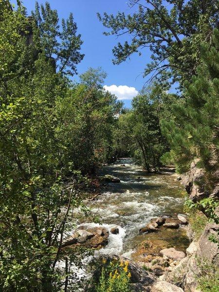 Rushing Piney Creek