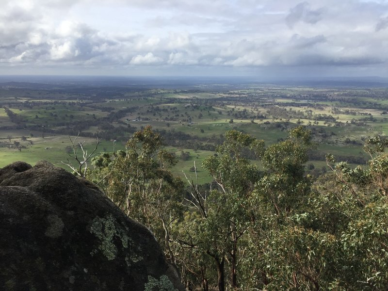View from Mount Alexander.