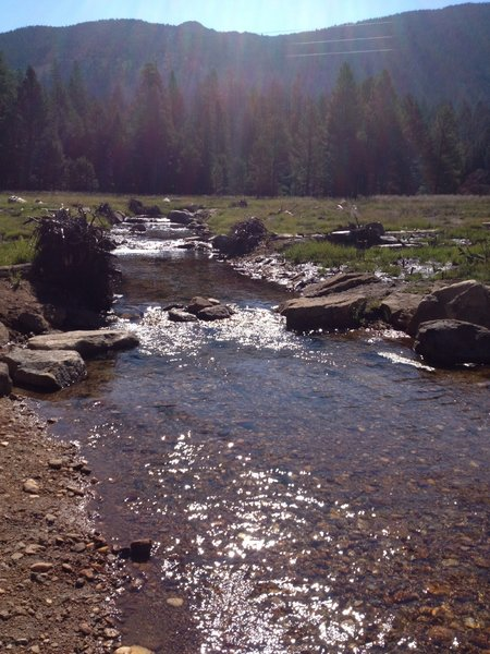 Cold Creek (facing south, up the mountain)