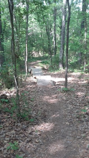 A fun little wooded section.