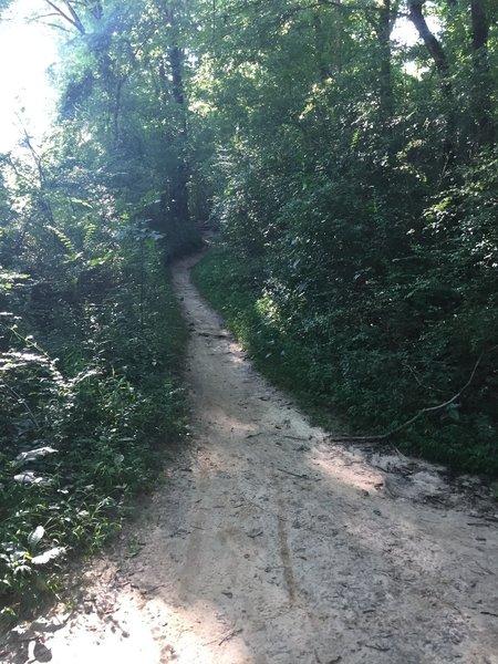 Riverside trail.