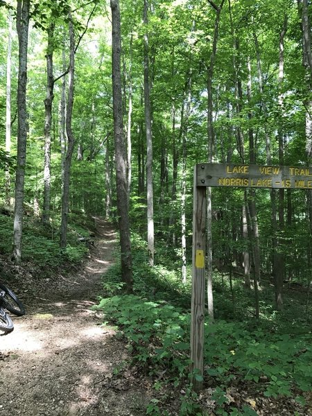 The start of Lake View Trail.