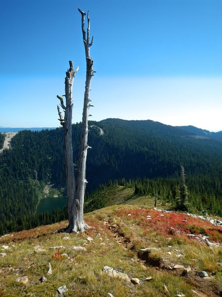 The trail off Lookout Mountain down towards Lost Lake.