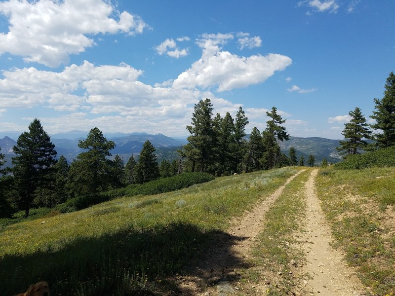 Heading north on the trail