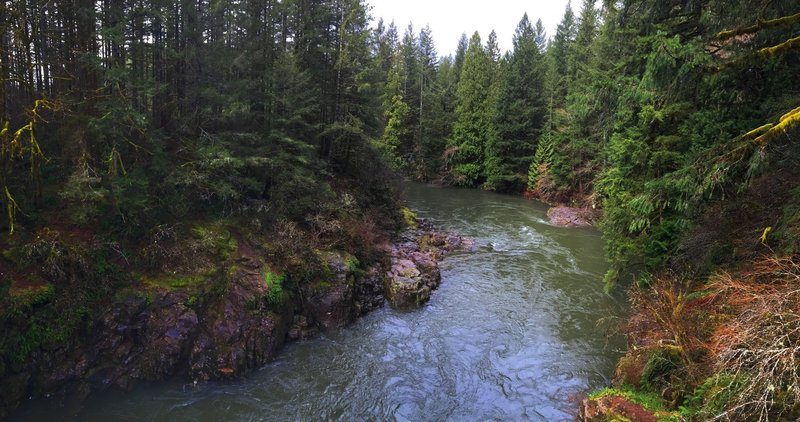 The East Fork of the Lewis River carving its way through the basalt cliffs.