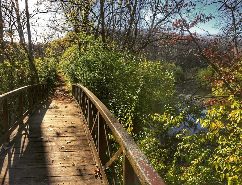 Great bridges on this trail!