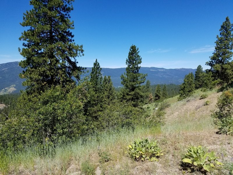 Great vistas