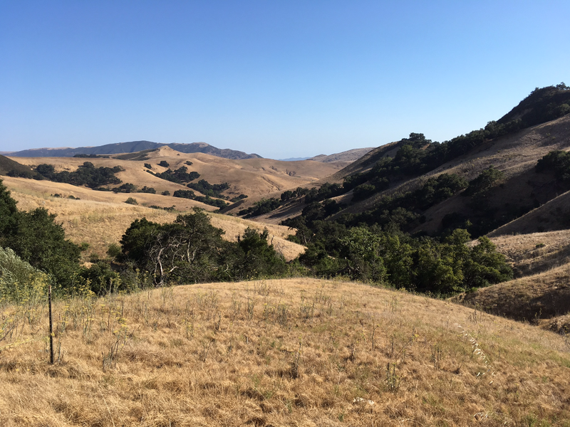 The view from one of the hills on the Poly Canyon Trail