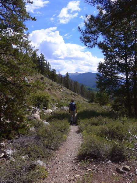 Coming out of the trees towards Arapaho.
