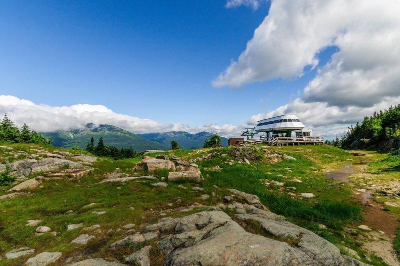 Top of the ski area - just below Wildcat D summit