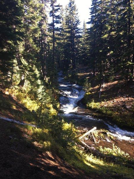 Gushing stream.