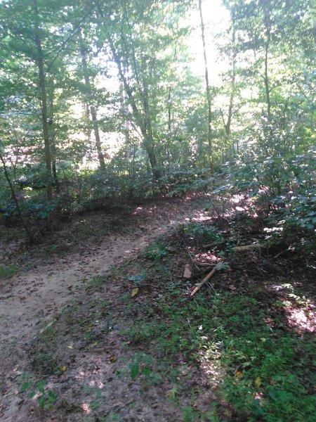 Trailhead to a singletrack dirt trail