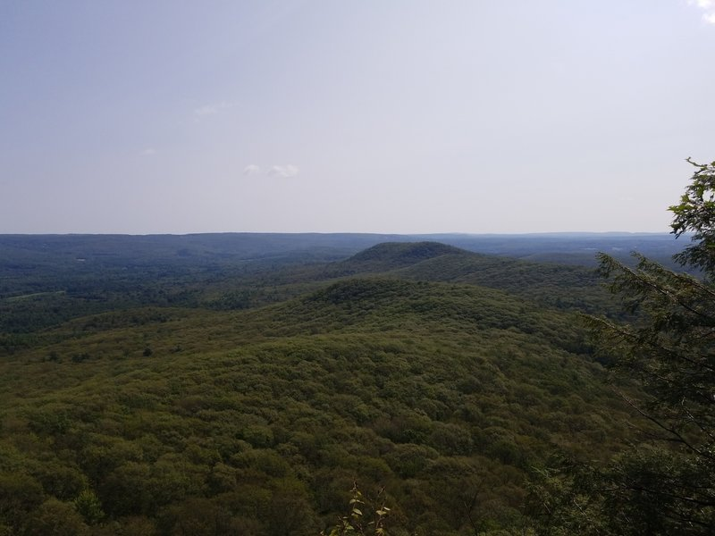 View east from Mt. Norwottock false summit.