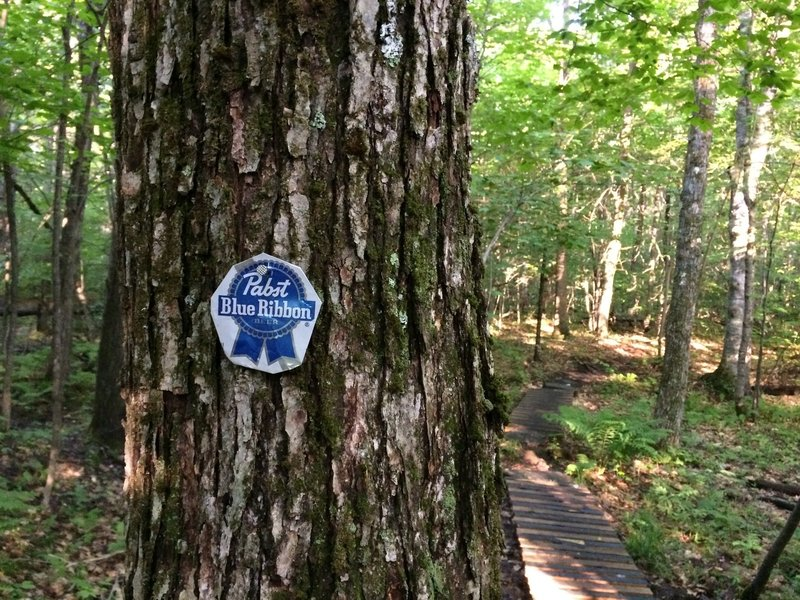 "An ""authentic"" Blue Ribbon Trail Sign."