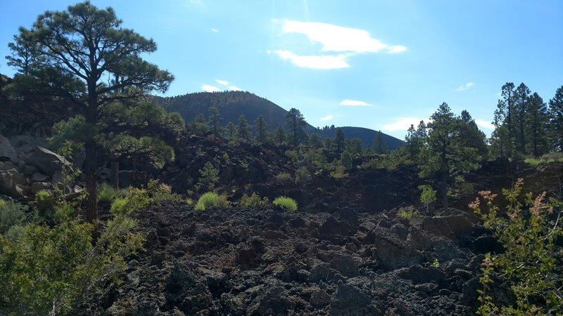 Sunset Crater / Lava Flow