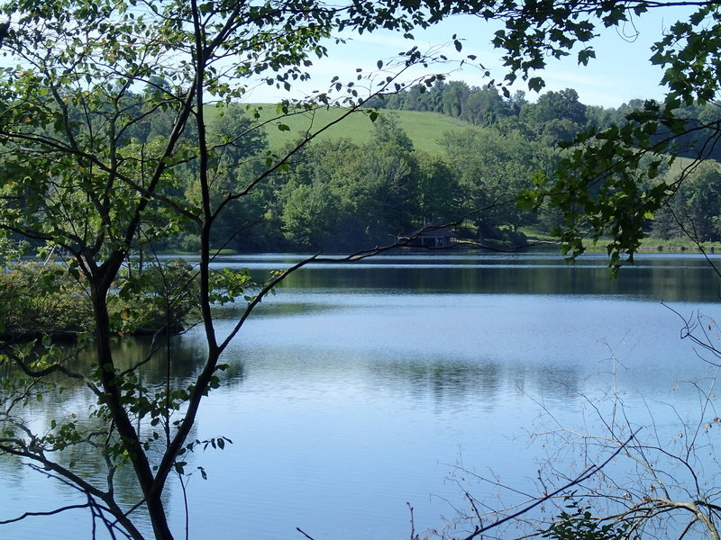 Clove Creek Pond