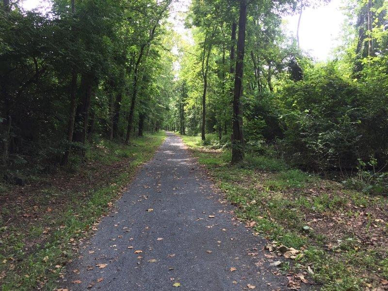 Trail - wide, open, flat gravel