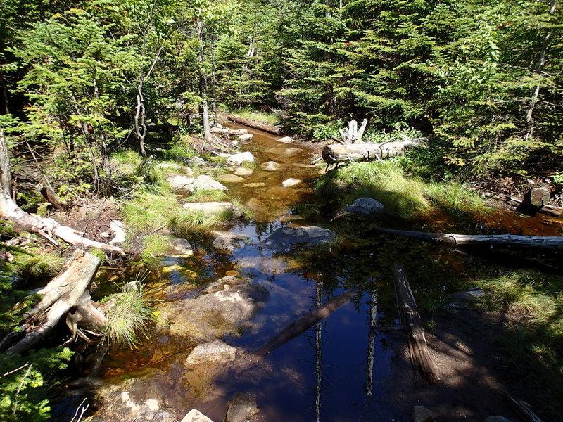 Trail on Esther Mountain