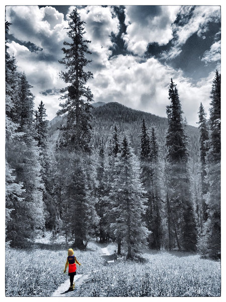 Lower Ice Lake Trail.