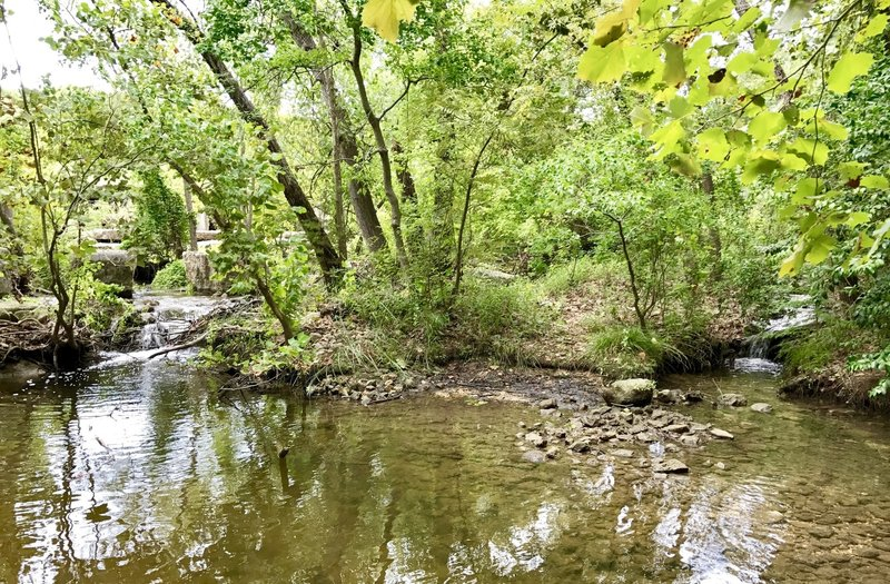 Woodlands Park & Nature Preserve... easy trail loop around the park and creek/lake area.
