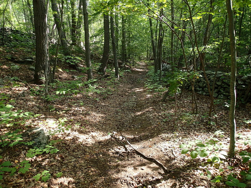 Sections of the trail is lined with a stone wall on either side.