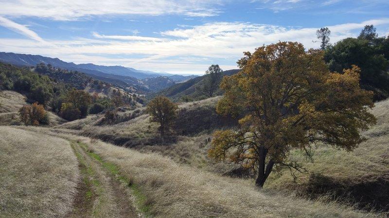Looking back down Long Canyon toward Berryessa.