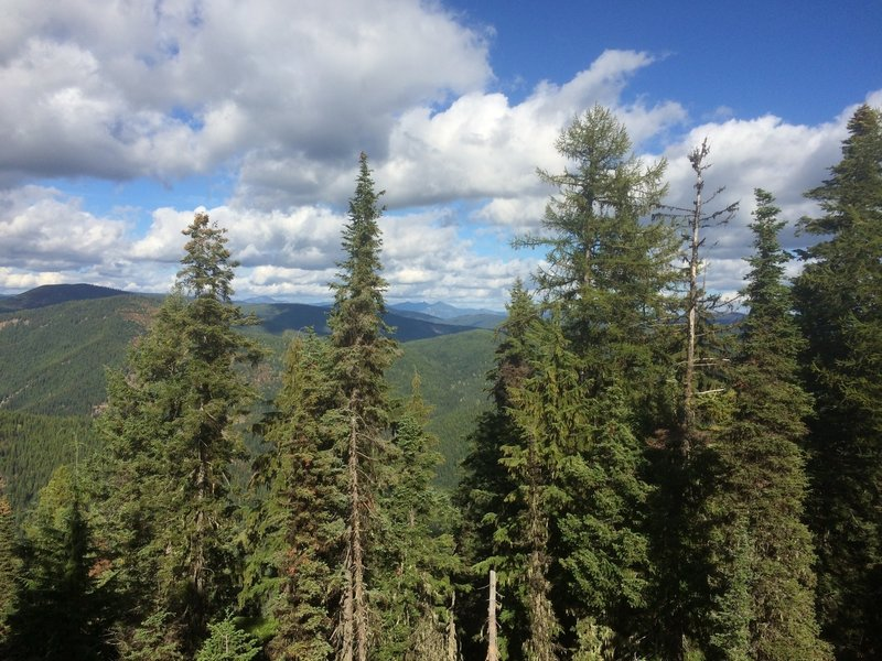 View from Ermine Ridge Trail.