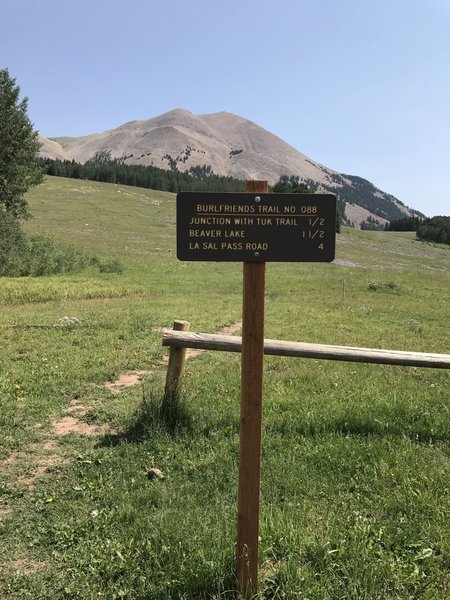 Trailhead at La Sal Pass with beautiful view of Mt. Peale.