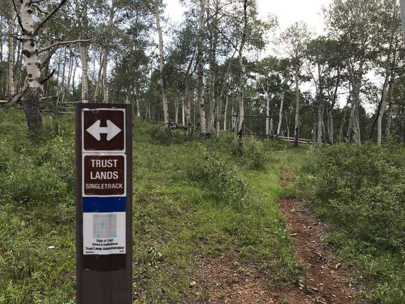 Look for these markers along the trail to stay on track