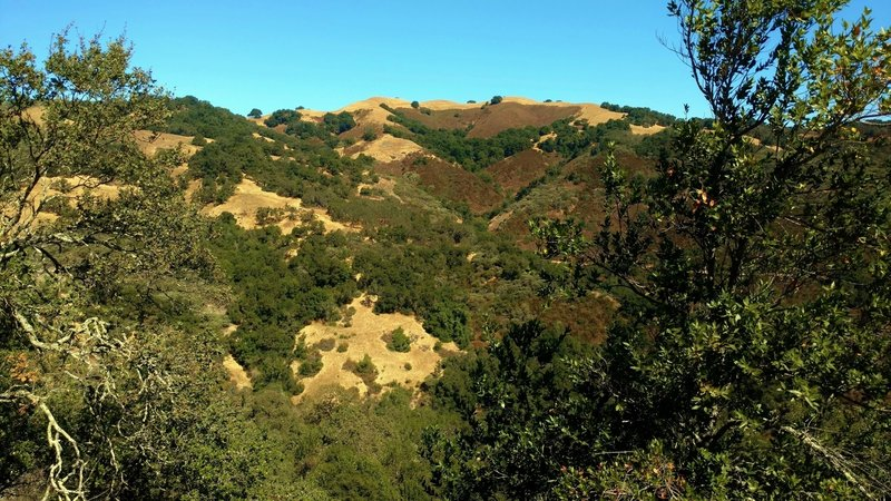 The hills of Rancho Canada del Oro, looking northwest across Baldy Ryan Canyon from a good viewpoint on Mayfair Ranch Trail