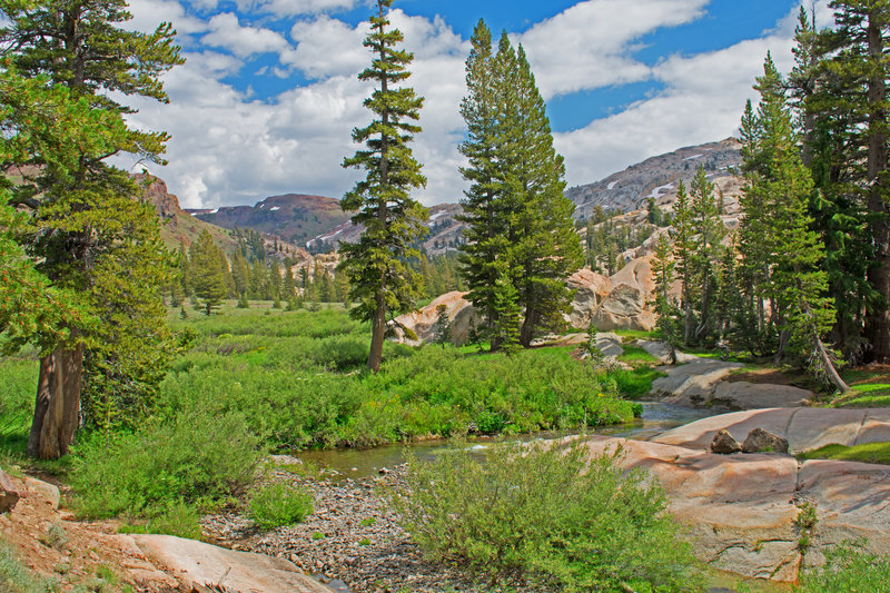 Entrance to Lunch Meadows which is filled with colorful flowers. Notice the divide between metamorphic rock on the left and in the background and granite on the right