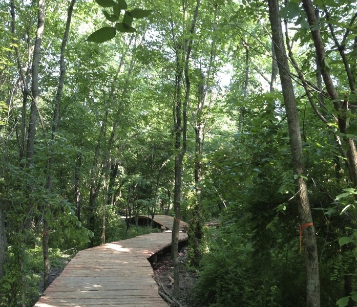 A 350-ft cedar boardwalk, very nice.