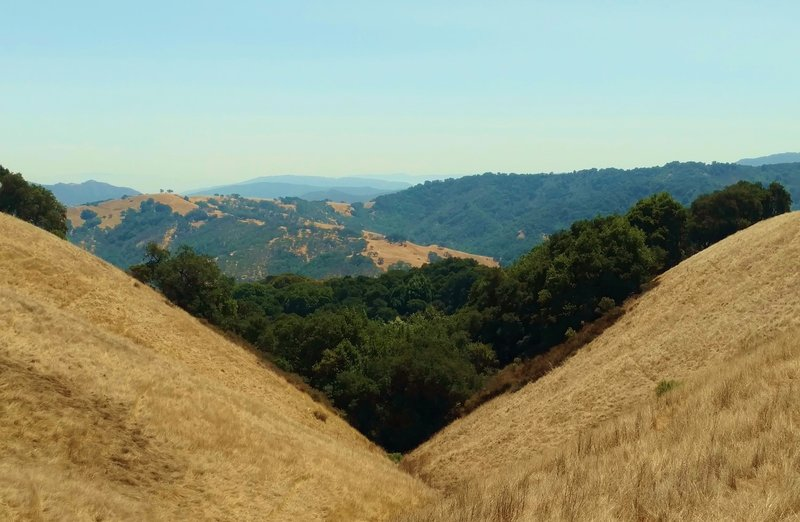 The hills of Central California seem to go on forever, when looking south from Bald Peaks Trail