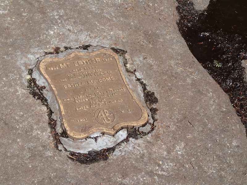 No views from the summit.  Only a summit plaque.