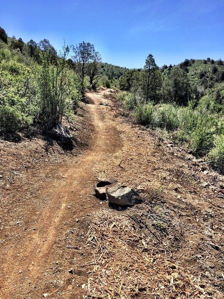 P-Mountain Trail