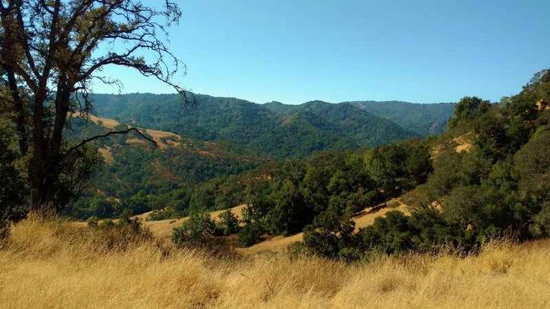 The countryside looking southwest towards the Santa Cruz Mountains, from the Mayfair Ranch Trail