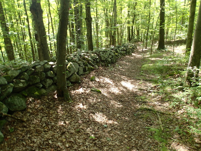 Old stone wall along the East Mountain Loop Trail