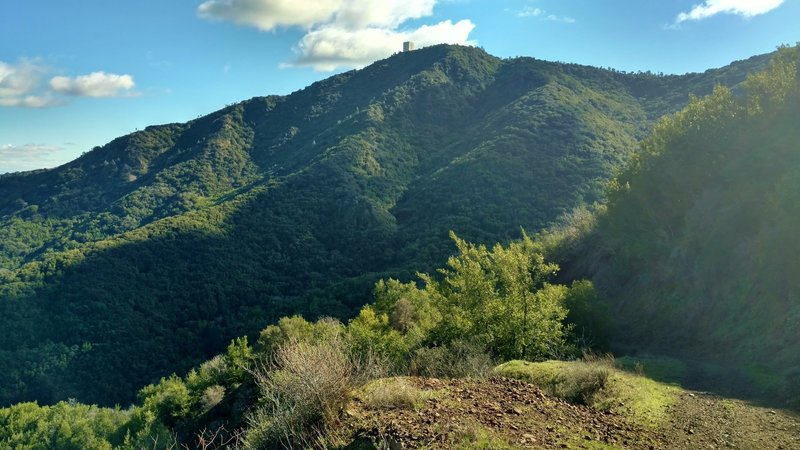 Mt. Umunhum, 3,488 ft., as seen from the north