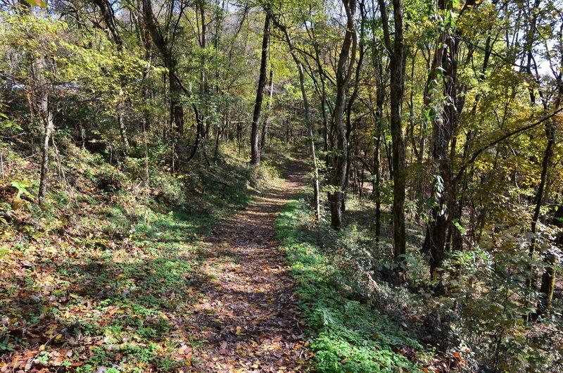 Edgar Evins Millenial Trail