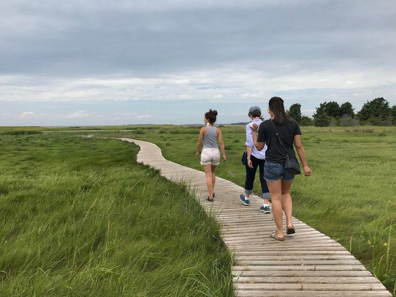 Try Island Trail boardwalk.