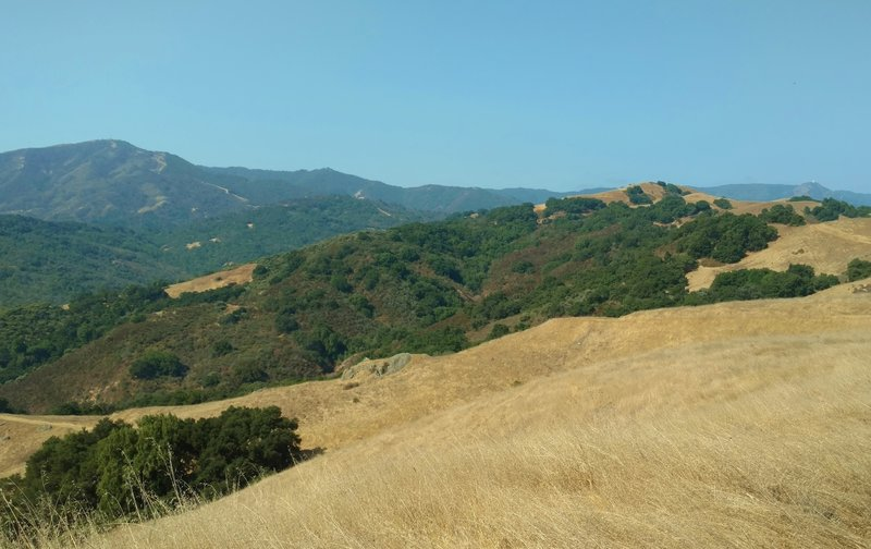 In the distance, Santa Cruz Mountains - Loma Prieta (left) and Mt. Umunhum (right), looking west-southwest from Bald Peaks Trail, on a sunny summer day.