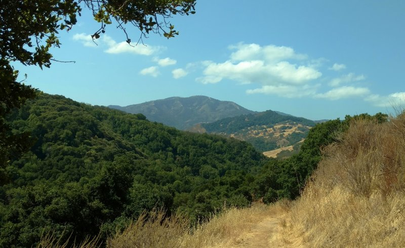 Loma Prieta in the Santa Cruz Mountains, appears in the distance, upon rounding a bend, high on Little Llagas Creek Trail.
