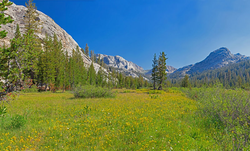 Emigrant Lake Trail goes up a long flowered covered meadow above Buck Lakes. Black Hawk Mountain is in the left-center background.