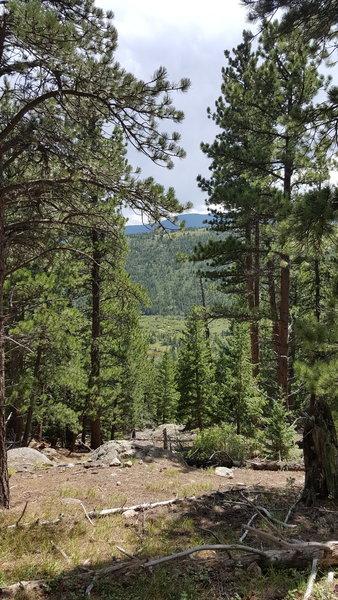 Trail snapshot.