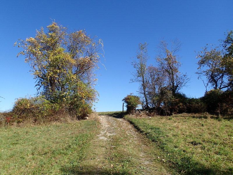 Perkins Trail cutting through farmlands.
